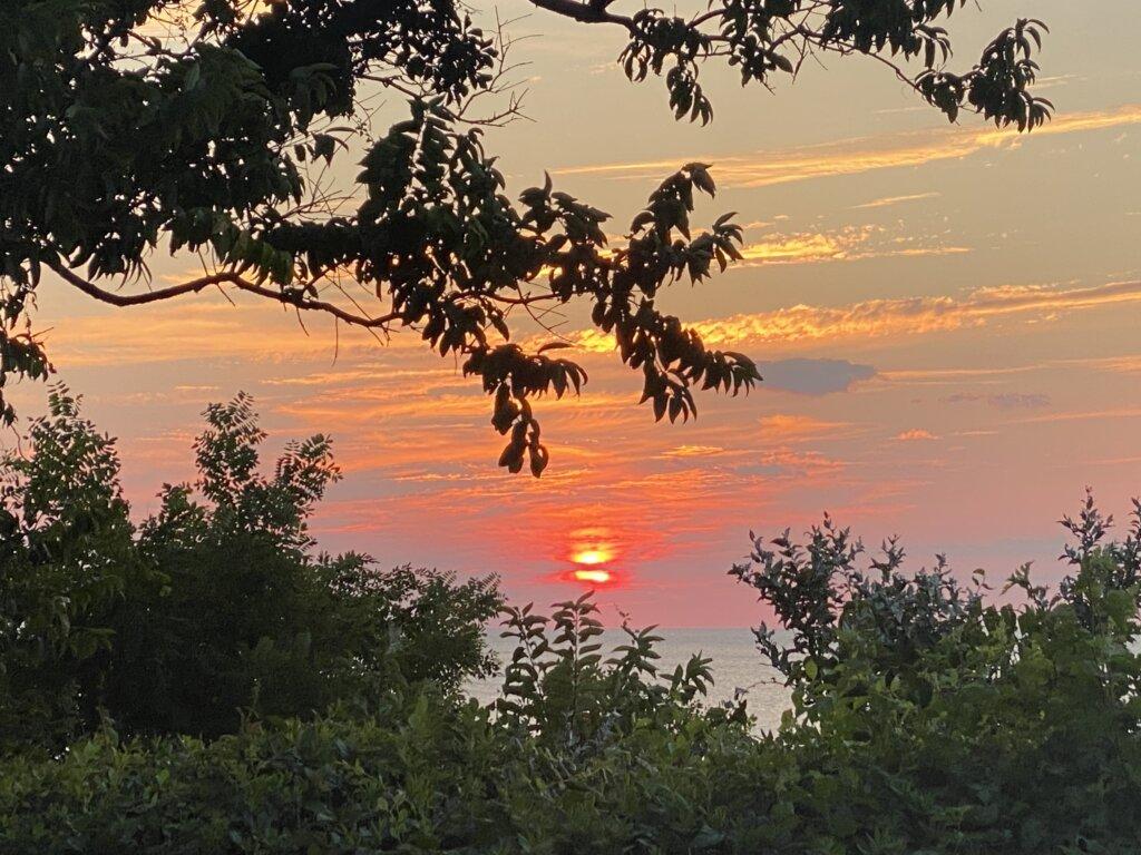 Southfork Sunset