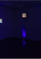 Install shot of What Comes Through, solo show at 247365 Photo credit: 247365